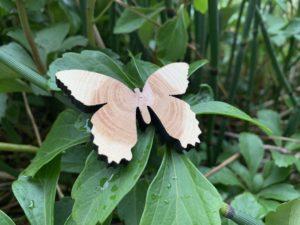 人工的な蝶